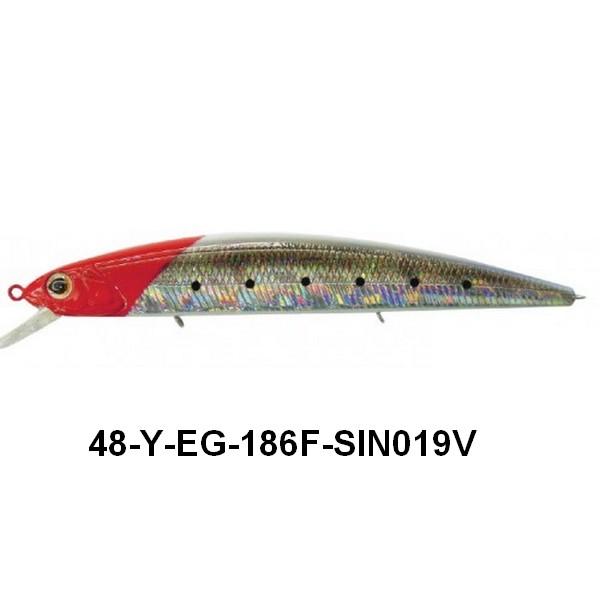 48-y-eg-186f-sin019v