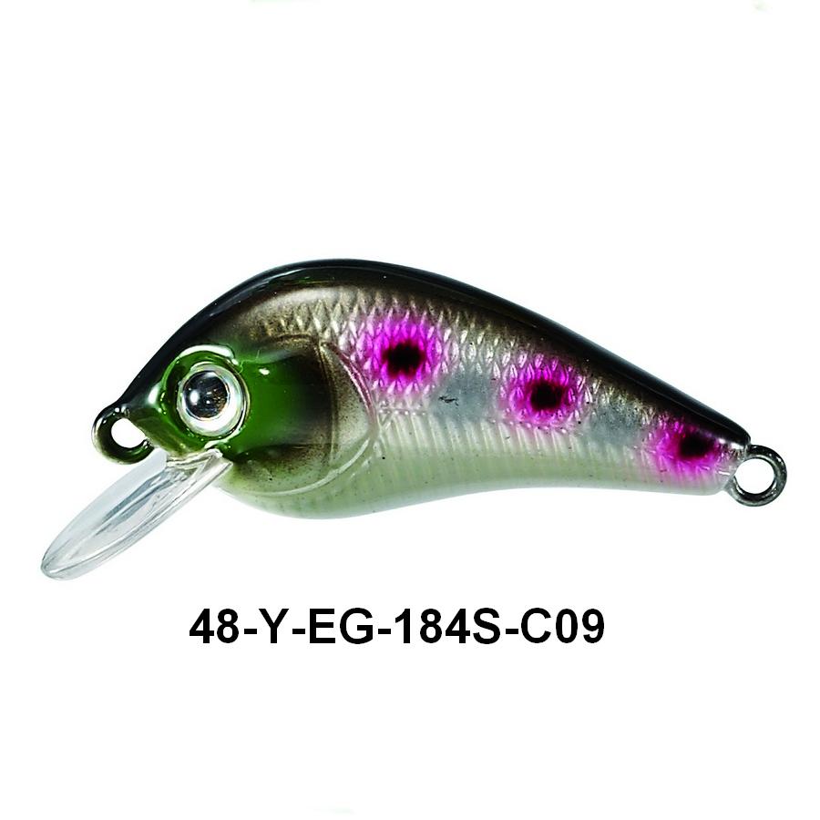 48-y-eg-184s-c09